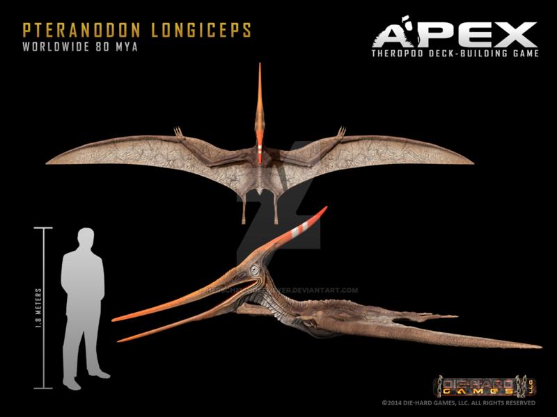 pteranodon_longiceps_by_herschel_hoffmey