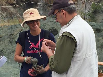 Dinosuar Dig Day 2015 Mantua