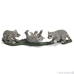 Scheich Raccoon Cubs (14625)