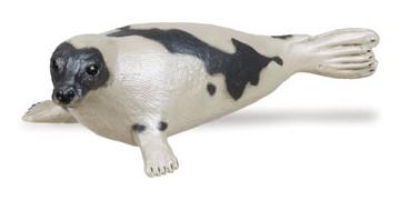 Safari Harp Seal ( )