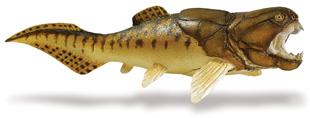 Safari Dunlleosteus (saf283329)