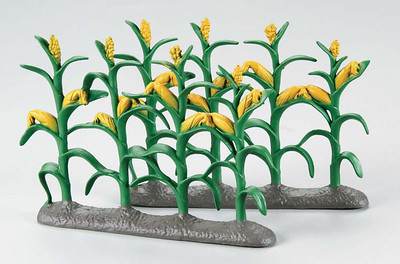 Corn Stalks (HCAY9349)