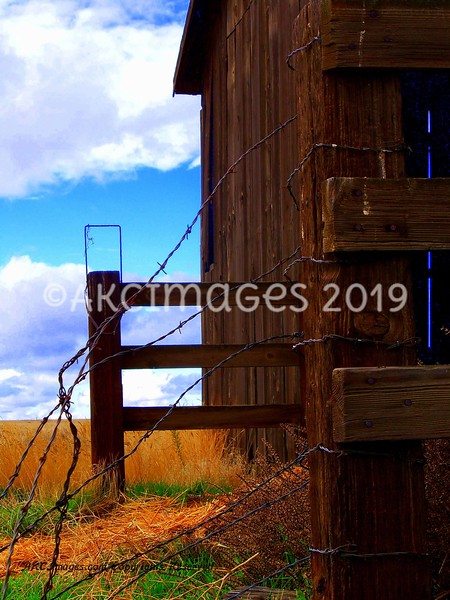 'Barbed Wire Barn'
