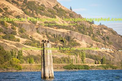Hood River Corridor 9 23 17-7385