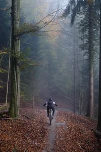 Rider descending Zürich's most popular trail, Üetliberg, Switzerland