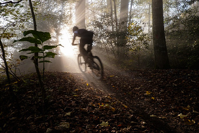 Thorsten bursting through the sunrays on Üetliberg, Zürich, Switzerland