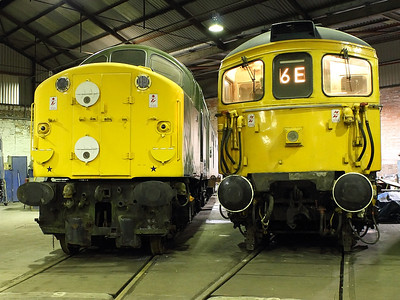 33108 and D213 pose next to each other at Barrow Hill Roundhouse