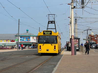 642 slows for the North Pier heritage tram stop on the 26th May 2013