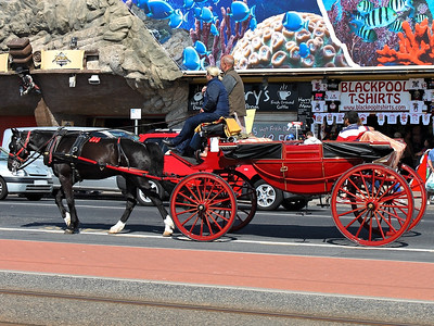 A horse & carriage at Central Pier on the 26th May 2013