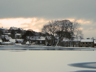 The view across the lake at Harold Park on the 20th December 2009