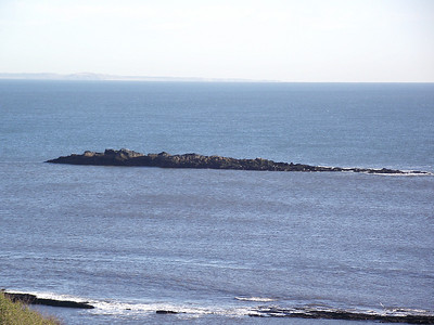 Some rocks in the Firth of Forth, at Linton Court, near Kinghorn, on the 25th October 2010