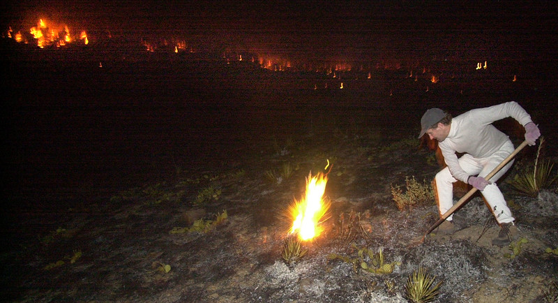 PINE BROOK FIRE