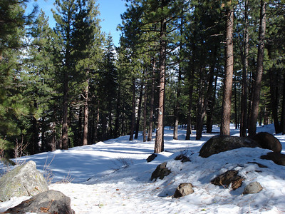 Truckee Disc Golf Course 12-07-2010 Fourth Tee