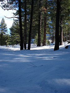 Truckee Disc Golf Course 12-07-2010 Fifth Tee