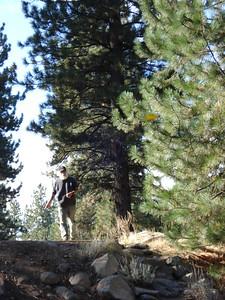 Truckee Regional Park 10/19/2011 Moses' drive on twelve