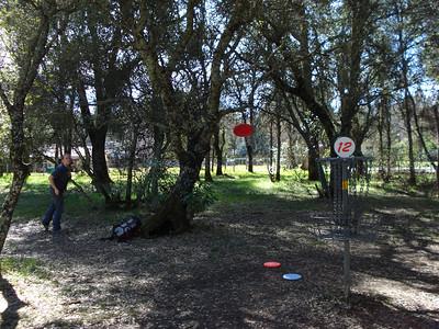 Disc Golf - Hanging Oaks 01-2011