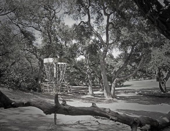 Oak Grove Disc Golf Course - Pasadena, CA (World's first course)