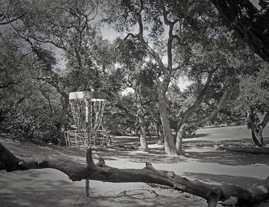 Oak Grove Disc Golf Course - Pasadena, CA (World's first course)