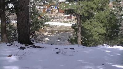 Truckee Regional Park 04/02/2012