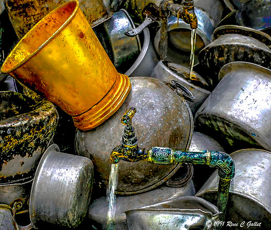 Discarded Pots