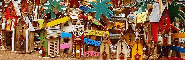 <center><h2>'Sun Flower Festival'</h2> Atlanta, Ga 2007</center>