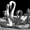 <center><h2>'Swans of Wood'</h2> Scott's Antiques,  Atlanta, GA</center>