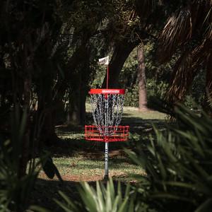 The Art in Disc Golf