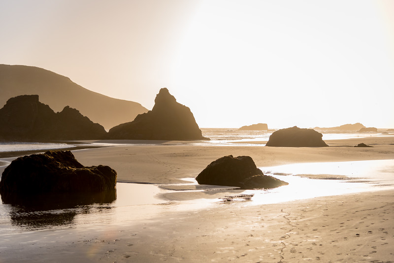 Wonder the Beach