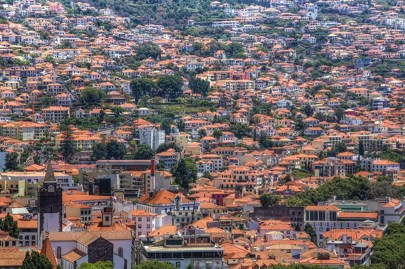 Funchal Rooftops