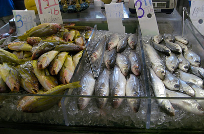 Fish displayed in ChinaTown, Honolulu, Hawaii