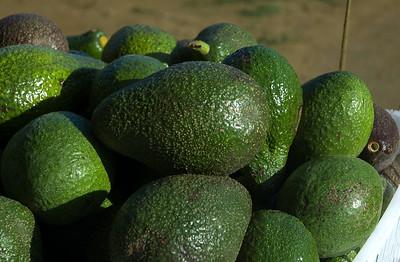 Avocado Haleiwa's Farmers Market