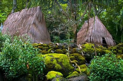 Waimea Valley pili grass huts