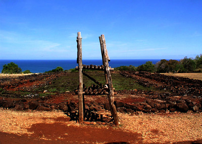 'Anu'u Oracle tower  at Pu'u O Mahuka Heiau where the gods spoke to the kahuna and ali'i.