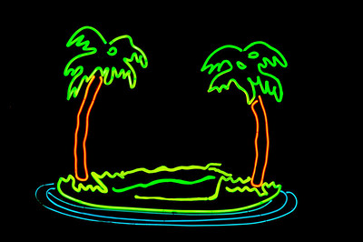 Neon Palm Trees on an Island  Honolulu, Hawaii