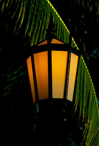 Old-fashioned lampposts along the beach in Waikiki  Oahu, Hawaii