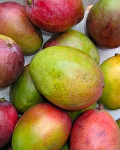 yummy mangos