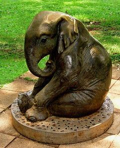 Bronze statue of a baby elephant    Honolulu Zoo, Waikiki