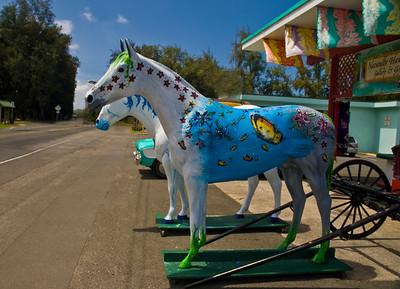 DSC_8923woodenhorse