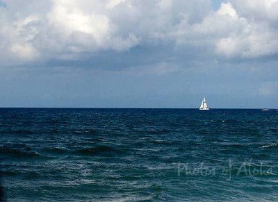 White Sailboat on the horizon  Ali'i Beach near Hale'iwa Harbor