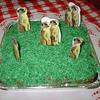 Meerkat Manor Cake