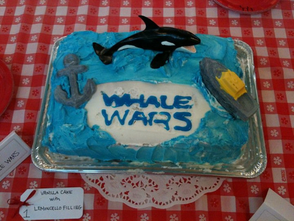 "Animal Planet's ""Whale Wars"" by Rachel Stevenson"