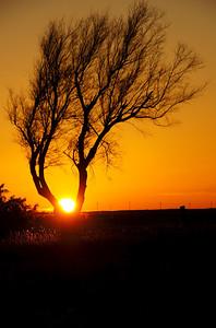 Kansas Sunset 1