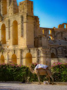 EL JEM, Tunisia