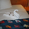 Swan towel animal