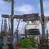 Disney Wonder from Castaway Cay