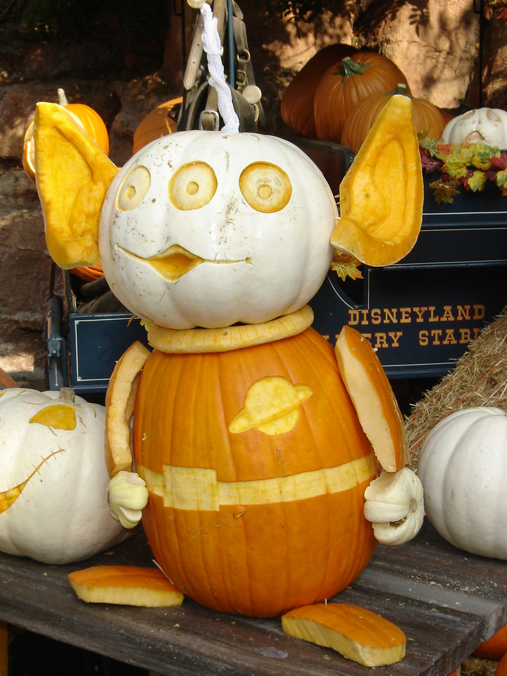 They had some really cute pumpkins carved around Big Thunder Mountain Ranch.