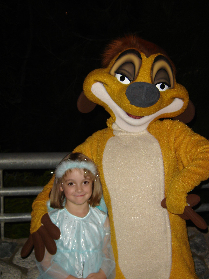 Some adorable creature and Timon.