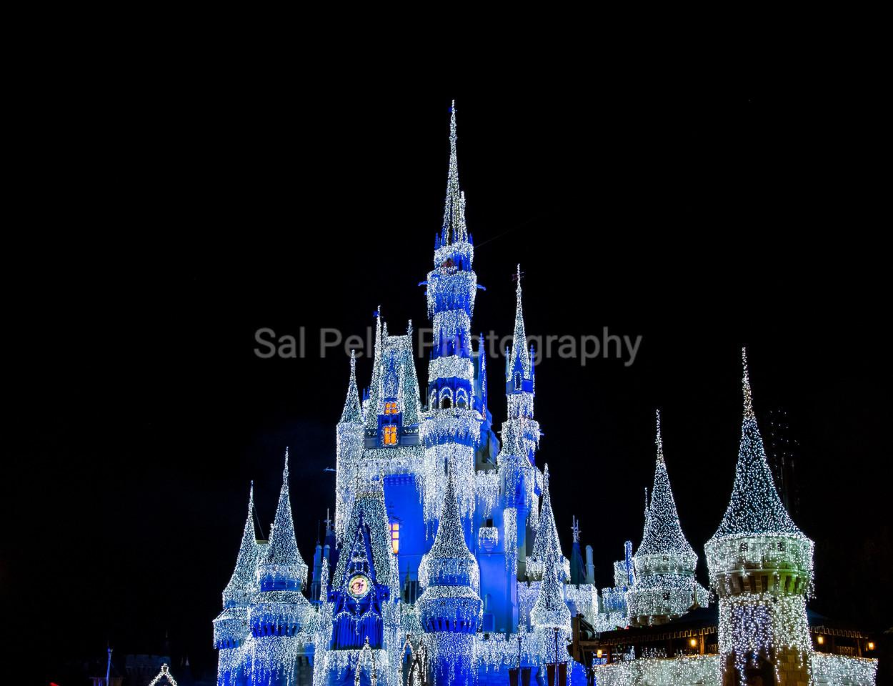 Disney World Nov 2016