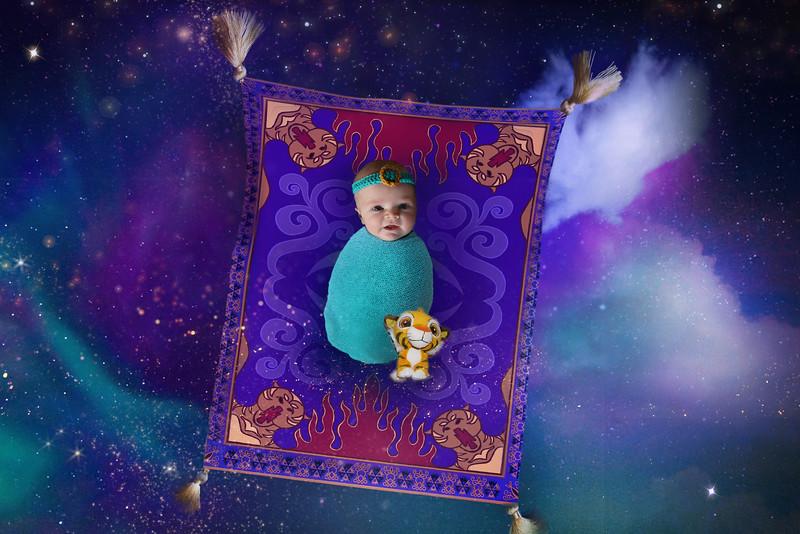 Disney Aladdin Backdrop