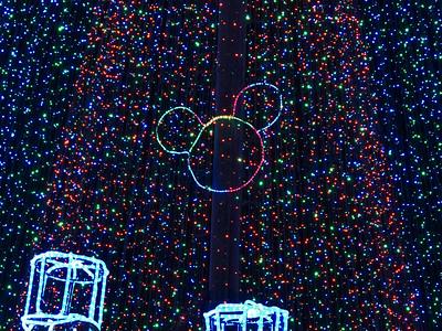 Posted: Christmas POTD, Osborne Lights '15,